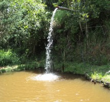 Sitio Santo Antonio do Pinhal Ref : 1258