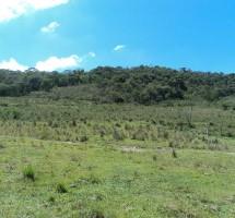 Terreno em Santo Antonio do Pinhal Ref: 1263